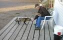 Larry & fox