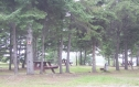 Campground empty